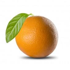 תפוזים - פירות וירקות