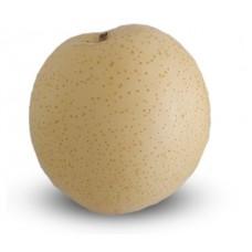 השוקה - תפוח אגס נאשי