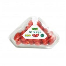 שרי לובלו משולש - פירות וירקות