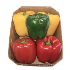מיקס פלפלים צבעוני (5 יח פלפל) - פירות וירקות