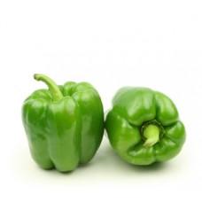 פלפל ירוק - פירות וירקות