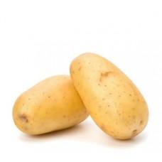 """תפו""""א לבן תפזורת (תפוח אדמה) - פירות וירקות"""