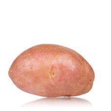 """תפו""""א אדום תפזורת (תפוח אדמה) - פירות וירקות"""