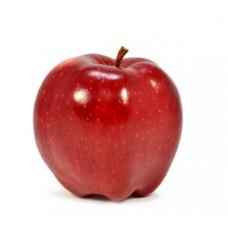 השוקה - תפוח גלה